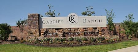 Cardiff Ranch Realtor - Cardiff Ranch Builders - Real Estate Agent Cardiff Ranch
